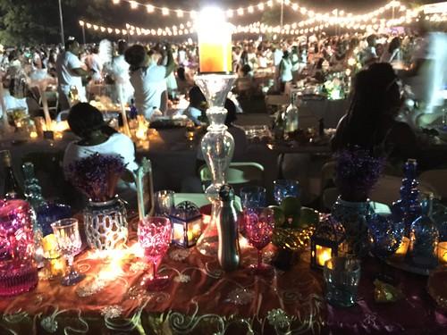 Dinner in White 2016 in Prospect Park (14)