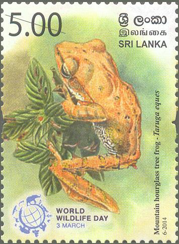 Sri lanka 1st day sex kesbewa polgasowita aranda amp isharaa - 1 1
