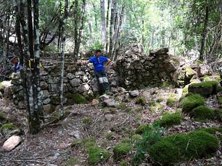 RD du Carciara (branche Paliri) : vestiges de deux caseddi imposants après démaquisage