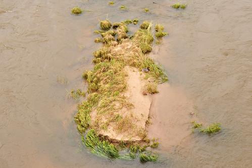 Tal der Loire Schlösser der Loire Rekordhochwasser Juni 2016 Überschwemmungen Zerstörungen Verheerungen Foto Brigitte Stolle 2016