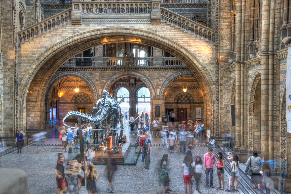 Natural History Museum kbh com buste