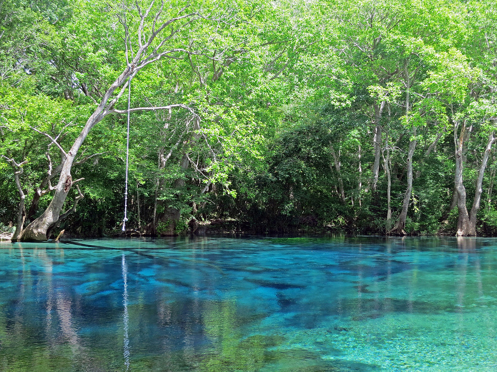 Cypress Spring Florida A Fabulous Spring Reachable Only