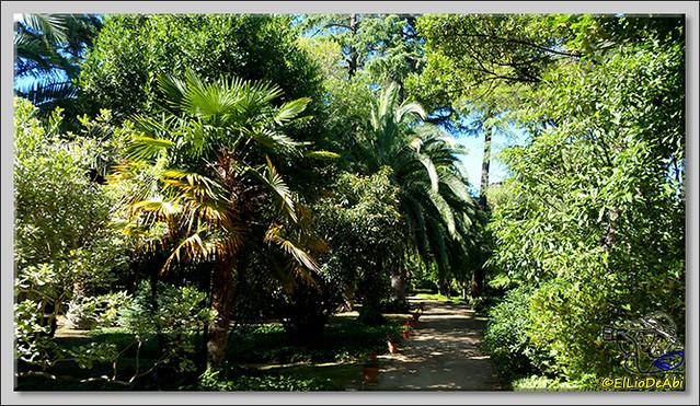 Jardines de Pedralbes. Barcelona (5)