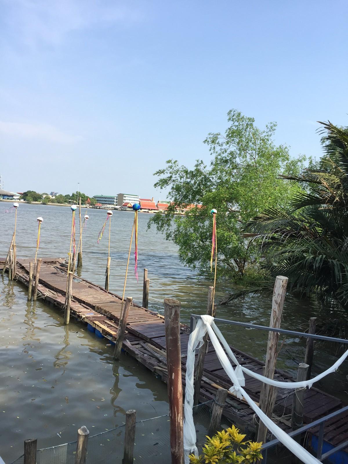 bangkok tree house 1