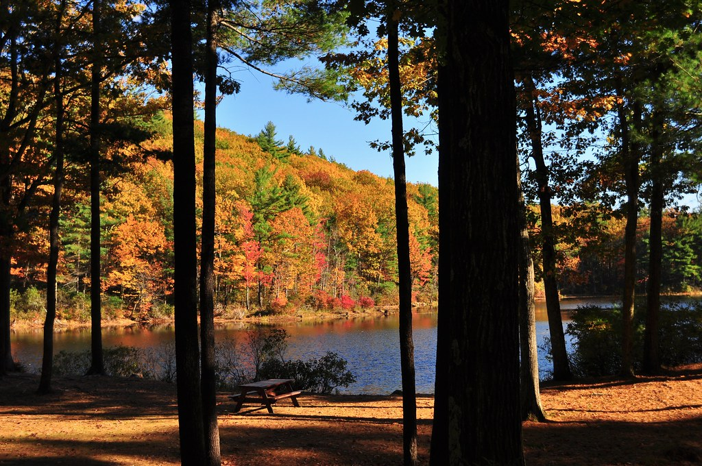 Leominster State Forest Beach