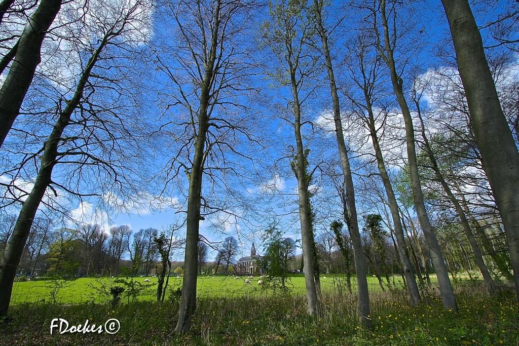 Kasteel Marquette Heemskerk, the Netherlands   The world in f stops   Flickr