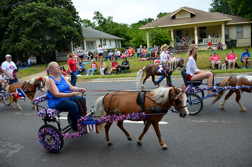 Miniature Horse and Buggies