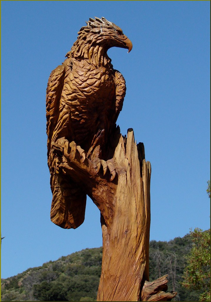 Diy wood carving eagle plans free