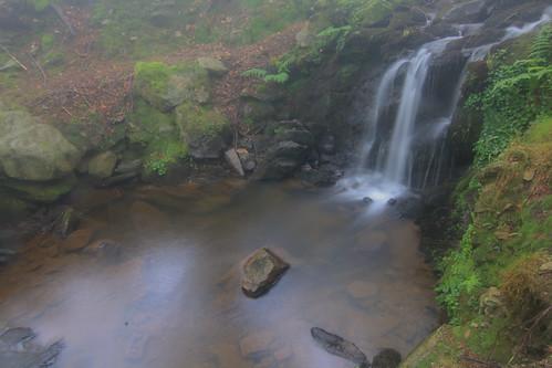 Parque Natural de #Gorbeia #Orozko #DePaseoConLarri #Flickr - -649