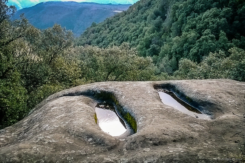Las tumbas del Bassis