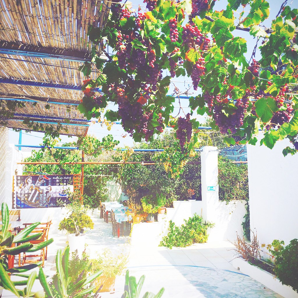 Big,fat, juicy grapes at Naxos island, Greece | via It's Travel O'Clock