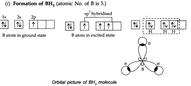ncert-solutions-for-class-11-chemistry-chapter-4-chemical-bonding-and-molecular-structure-32