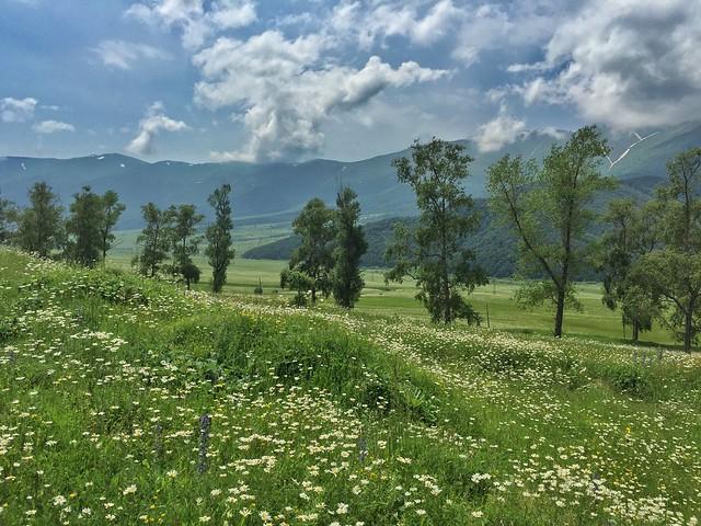 Dilijan (Armenia)