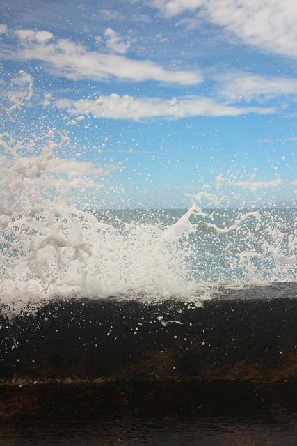 Maui_buzz's marina5