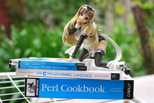 A Sasara anime figure from Clara on top of several Perl tomes