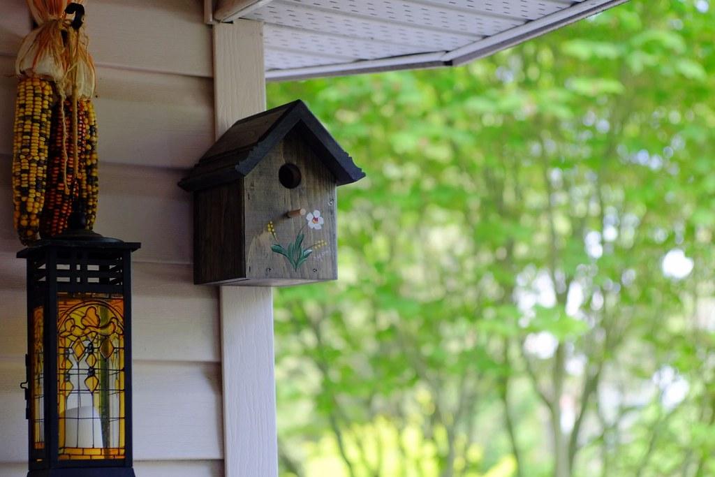 Diy birdhouse project john stone storybuilder for Diy stone birdhouse