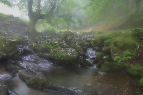 Parque Natural de #Gorbeia #Orozko #DePaseoConLarri #Flickr - -501