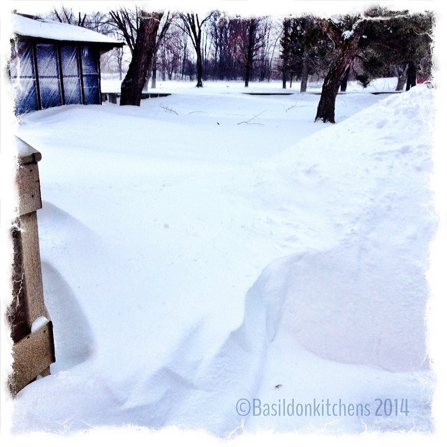 18/2/2014 - yard {this is the current condition of my yard. Lots of snow drifts & shoveled piles. You can't even see the back fence anymore} #photoaday #winter #weather #snow #drifts