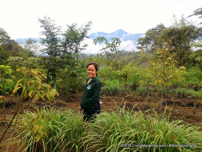 LivingMarjorney-Binahon-Agroforestry-Farm-Bukidnon (60)
