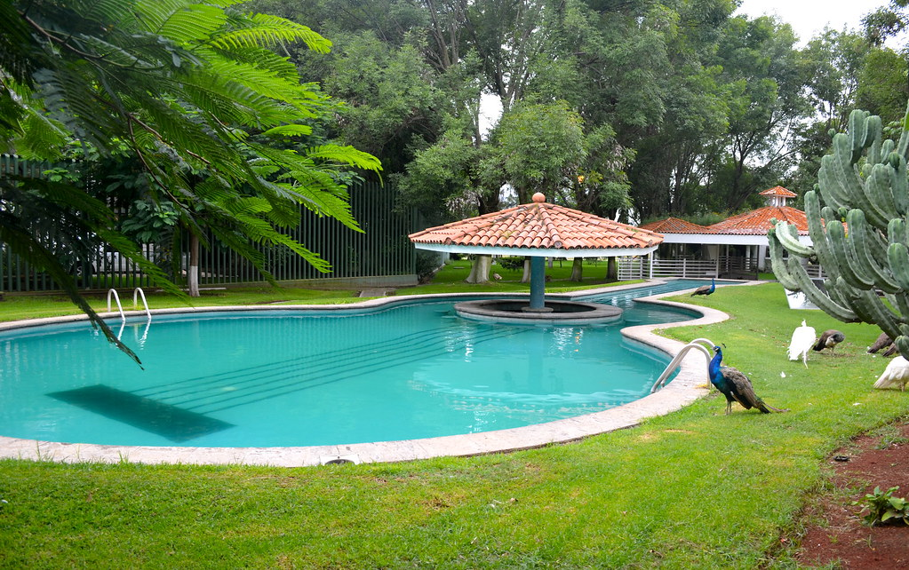 Home and swimming pool of Vicente Fernandez | Vicente ...