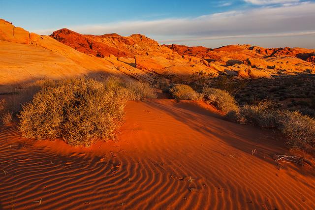 Photo of Mojave