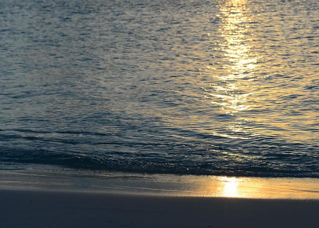 Orilla color dorado en la isla de Odagalla