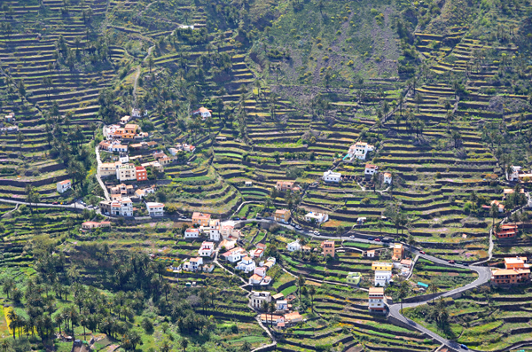 View of terraces of Valle Gran Rey, La Gomera