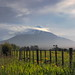 Mount Taranaki (aka Mount Egmont) New Zealand
