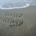 Misspelled Happy Birthday written in the sand