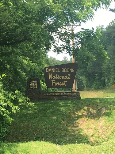 Daniel Boone National Forest sign near US-421