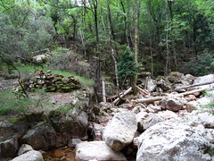 Confluence Carciara/Velacu : vestiges de pont (?) en RD du Velacu à l'arrivée du chemin