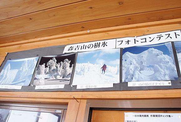 日本森吉山樹冰30