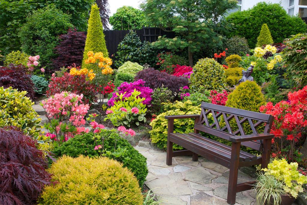 garden seat amongst the azalea flowers june 5th flickr