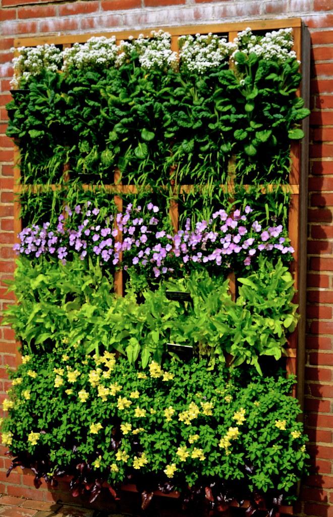Vertical Garden Chicago Botanic Garden Glencoe Il Flickr