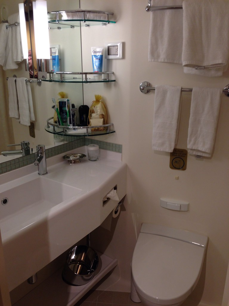 royal princess bathroom of c406 dmwnc1959 flickr
