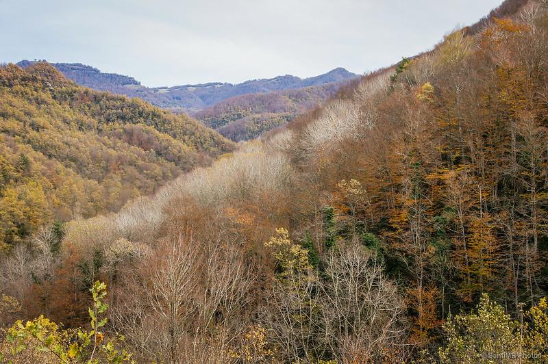 Los colores del otoño en el camino al Salt del Molí