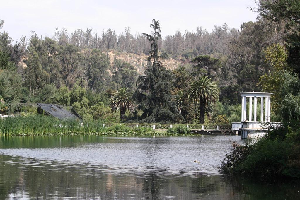 Jardin botanico laguna del jardin botanico de vi a del for Jardin botanico de berlin
