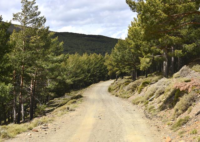 Pistas forestales del Parque Nacional de Sierra Nevada