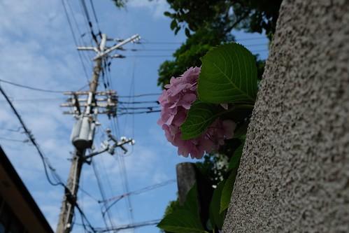 港町神戸をめぐる冒険