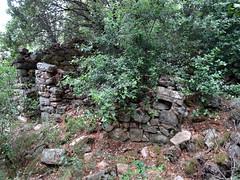 Sentier de Punta Piscia : ruines d'habitation le long du sentier