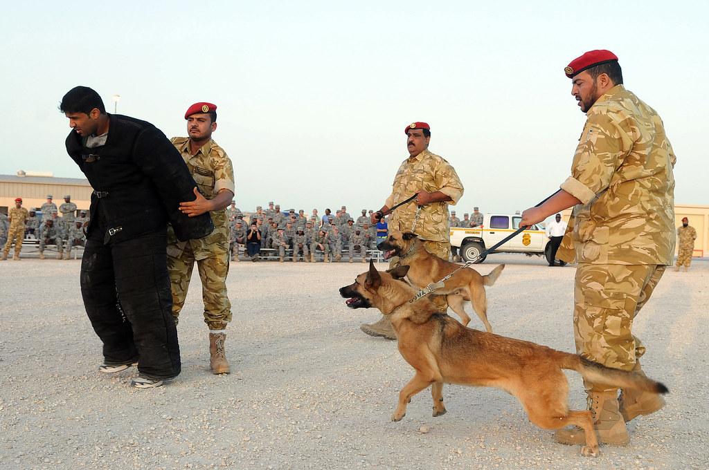 Qatar Army Jobs Related Keywords & Suggestions - Qatar Army Jobs