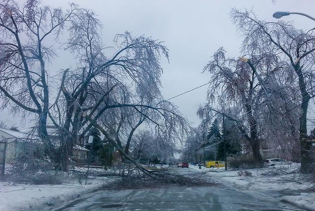 Ice Storm, Freezing Rain Toronto Dec 22 2013 | Flickr ...  Ice Storm, Free...