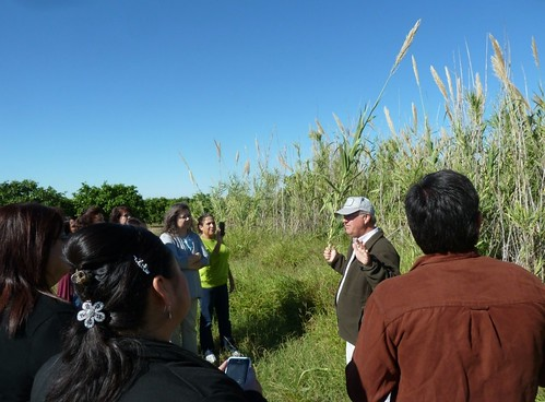 Future Scientists Program teachers in the field with ARS research entomologist John Goolsby