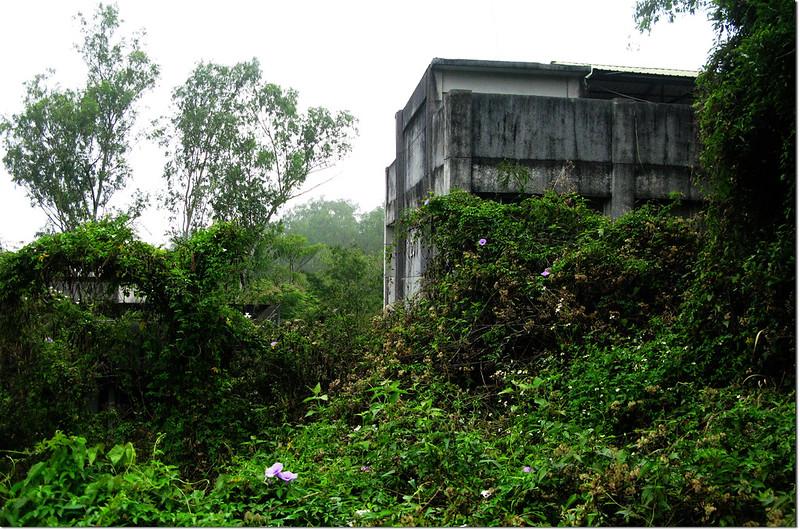 埔姜林山登山步道建物 3