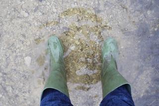 Otmoor February 2014