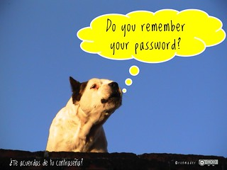 An image of a dog asking if you remember your password