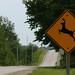 Caution Deer sign