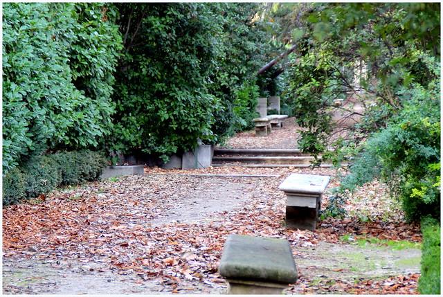 Invierno en el jard n bot nico de madrid flickr photo - Jardin de invierno ...