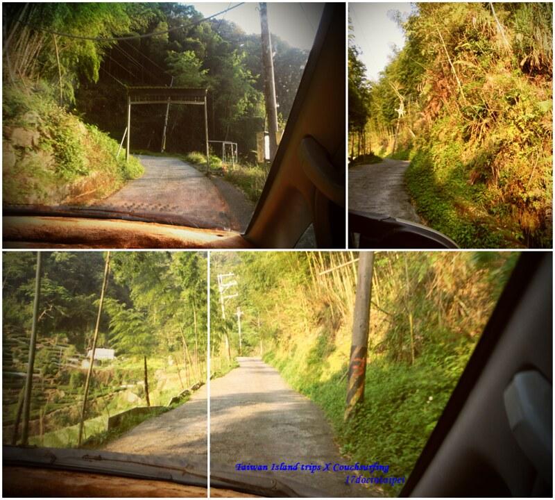 Taiwan Island trips。Couchsurfing。環島景點。南投秘境。忘憂森林。17度C隨拍。  (2)