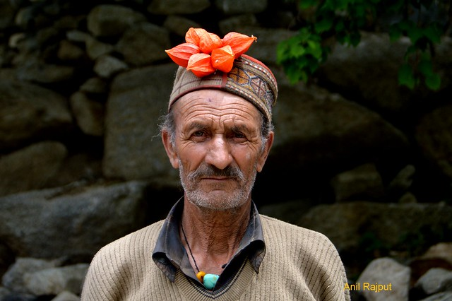 Red Aryan Man from Darchik village, Batalik, Kargil